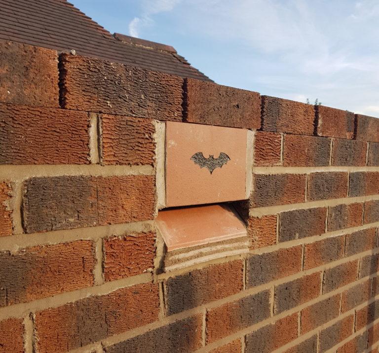 RammSanderson Bat Box