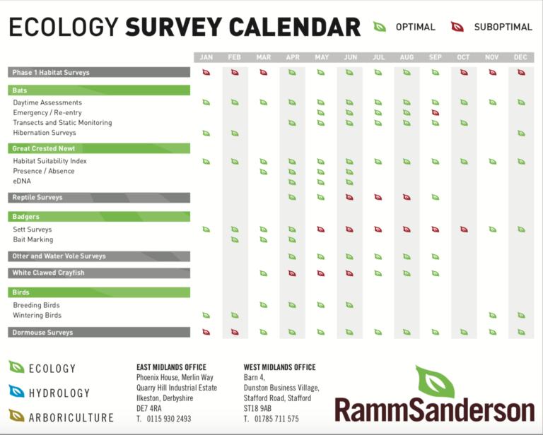 Ecology Calendar
