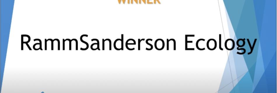 RammSanderson becomes an award-winning company