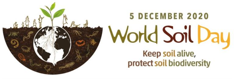 World Soil Day | RammSanderson