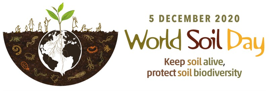 World Soil Day 2020 – Protecting Soil Biodiversity